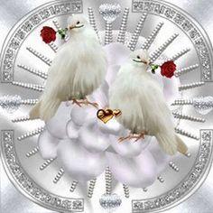 Love birds straight from the heart. Gif Pictures, Moving Pictures, Cute Pictures, Beautiful Pictures, Beautiful Gif, Beautiful Flowers, Dove Images, White Doves, Gif Animé
