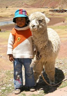 Little Friends - Peru