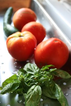 raccolti estivi, semine e trapianti