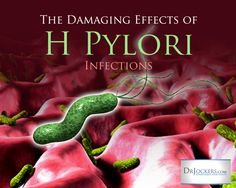 The Damaging Effects of H. pylori infections.