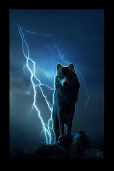 Wolf Fonte:Tumblir.com