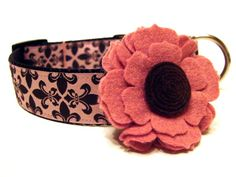 Designer Dog Collar Poochy Couture Pink and Brown by Dogologie, $18.00