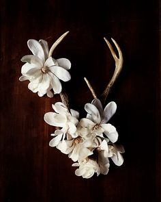 antler no. 6951 by kariherer on Etsy, $30.00