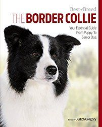Best of Breed - Judith Gregory Talks Border Collies | Border Collie Fan Club