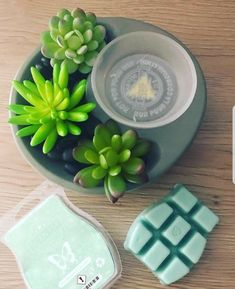 Wickless candles and scented fragrance wax for electric candle warmers and scented natural oils and diffusers. Shop for Scentsy Products Now! Scentsy, Colored Light Bulbs, Scented Wax Warmer, Wax Warmers, Faux Succulents, Fragrance, Consultant Business, Independent Consultant, Gel Tips