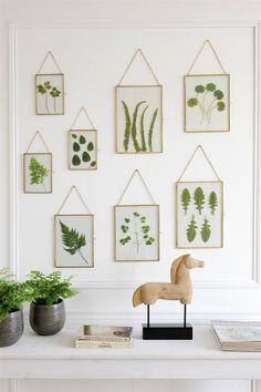 Cómo hacer cuadros con hojas enmarcadas