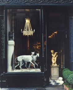 Window display: Scotch Collectables