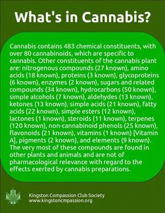 Chemical compounds known in cannabis