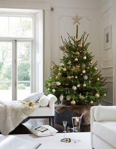 White living room, Christmas tree