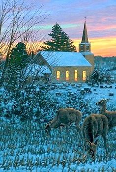 Church...Michael Sieve Beautiful Buildings, Beautiful Places, Beautiful Pictures, News Around The World, Around The Worlds, Take Me To Church, Old Churches, Church Building, Winter Photography