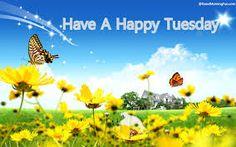 Happy Tuesday,