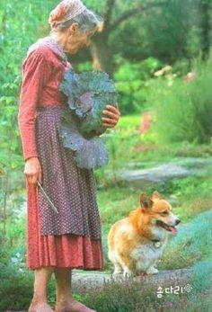 ♥ Tasha Tudor and her corgi...though she lived in the present day, she chose to live a simple rural life in which she grew her food and had animals on her farm. She made her own clothing in a simple style of days gone by. One of my favorite ladies.