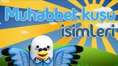 Muhabbet kuşu isimleri - Muhabbetkusum.com