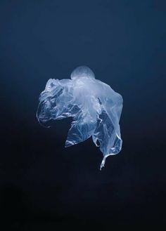 Gobelins - Le sac plastique - Dorothée Murail http://www.generation-image.fr/gobelins-50-ans-de-photographie/
