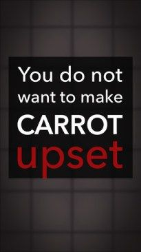 Carrot The Organiser That You Do Not Want To Upset!