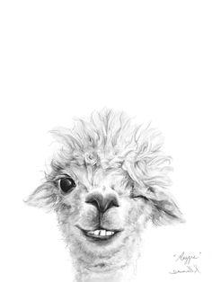Animal Drawings Llama Draw You A Portrait - Maggie Wall Art - Meet Maggie! Shop this and more adorable animal art from Kristin Llamas. Alpacas, Cute Animal Drawings, Art Drawings, Llamas Animal, Painting & Drawing, Painting Prints, Body Painting, Art Prints, Llama Drawing