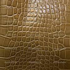 Resultado de imagem para pele de animal