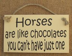 horse funny wooden sign ideal birthday present gift