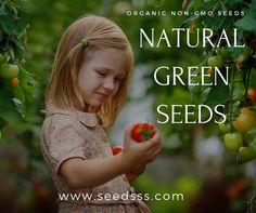 Home Grown Vegetables, Organic Seeds, Natural, Green, Nature, Au Natural