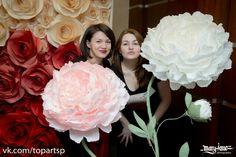 paper flowers, большие бумажные цветы, пионы