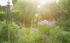 From the blog: Evigglade ♥: Summer evening in the garden