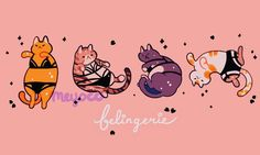 """3,942 Likes, 32 Comments - meyoコ (@meyoco) on Instagram: """"Lingerie cats """""""