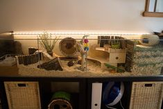 Ikea hack Detlof hamster cage I'm planning on getting an ikea cage just because they are so much more spacious. Hamster Kawaii, Hamster Tank, Hamster Bin Cage, Cool Hamster Cages, Gerbil Cages, Hamster Life, Hamster Habitat, Hamster Stuff, Rats