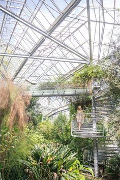 Exploring the Hortus Botanicus, Amsterdam