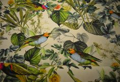 Jungle Birds tricot met print