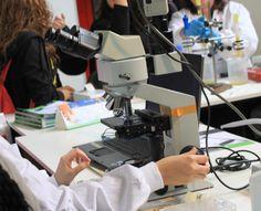 T'agrada investigar? A l'Espai Ciencia, demostracions i experimentació amb microscopis professionals.