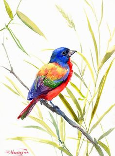 Painted Bunting Original watercolor painting 12 X by ORIGINALONLY, $38.00