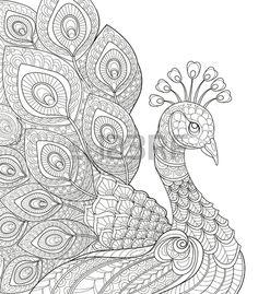 Paon Adulte page colorier antistress Main doodle noir et blanc dessin pour livre de coloriage Banque d'images