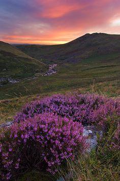 Cleave Dartmoor, Devon