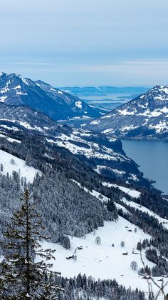 Chur, Mountains, Winter, Nature, Travel, Mountain Climbing, Climbing, Viajes, Winter Time