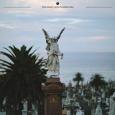 Waverley Cemetery - Sydney Guide by Marta Greber