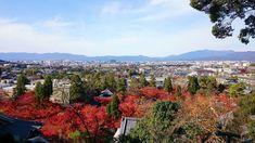 "– Mika no sekai - Japan: ""View of Kyoto from Tahoto pagoda in Eikando temple is amazing, especially on autumn. #japan #kyoto…"""