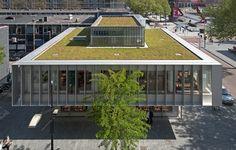 Dreamhouse: edificio azotea verde Roterdam. Rehabilitación edificio años 1950