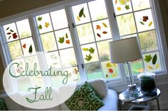 After Hurricane Sandy, I am feeling the need to fully experience the fall season before it slips away...