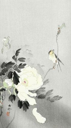 (99+) Following | Tumblr Japanese Plants, Japanese Bird, Korean Art, Asian Art, Chinese Painting, Chinese Art, Ink Painting, Watercolor Art, Illusion Paintings