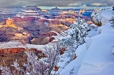 The Grand Canyon currently has 6 inches of snow. #imgur