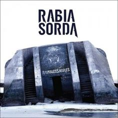"""Bei Rabia Sorda und ihrem Album """"Animales Salvajes"""" wünschen wir uns einfach noch ein bisschen mehr neues Material, denn das, was es gab, ließ sich definitiv hören."""