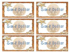 Sand Dollars - Money System for Ocean Theme Classroom in E