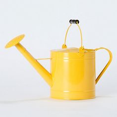 More yellow to brighten the day.  Lemon Utility Watering Can