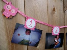 Reserved For Andrea - Tabs Only Including a 2 weeks Tab - Olivia The Owl First Year Photo Banner - Ribbon Included