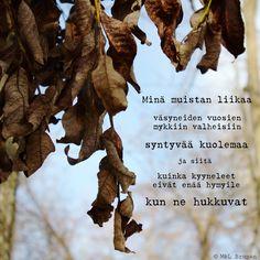 #runo #runoja #runoilija #valokuva #valokuvaus #suomeksi