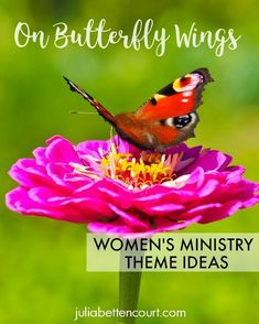 April 2018---Added some new devotional ideas for this theme. Butterfly Women's Ministry Theme. #womensministry #womensministryideas #butterflies Youth Group Activities, Church Activities, Youth Groups, Group Games, Small Groups, Church Ministry, Ministry Ideas, Devotional Ideas, Devotional Topics