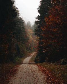 the art of slow living Dark Autumn, Autumn Cozy, Autumn Aesthetic, Nature Aesthetic, Monuments, Season Of The Witch, Autumn Scenery, Autumn Photography, Best Seasons