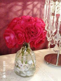 Rosa rosae-Nena Kosta