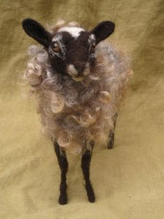 Needle felted sheep, soft gray curly wool.   Ainigmati