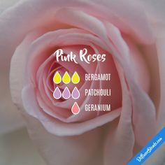 Pink Roses - Essential Oil Diffuser Blend